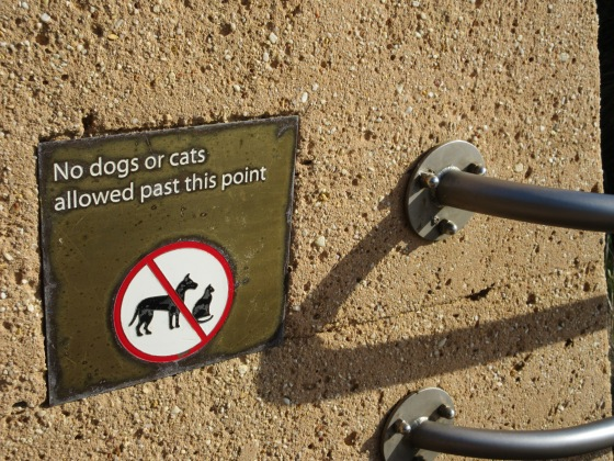 I got a kick out of these signs on a tourist bridge -- be sure to leave your cat in the car for this hike.